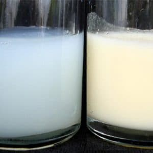 Sữa mẹ loãng lúc đầu và đặc hơn lúc cuối trong các bữa ăn của bé