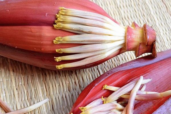 Ăn hoa chuối khắc phục các vấn đề về tiêu hóa thường gặp sau sinh