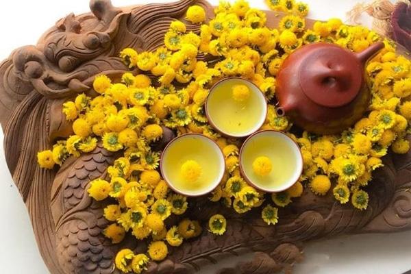 Hoa Cúc có tác dụng với đường hô hấp