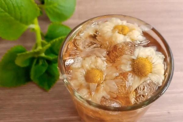 Với chị em trà hoa Cúc có thể giảm đau bụng kinh