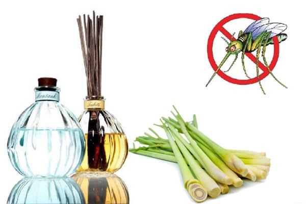 Tinh dầu sả có tác dụng xua đuổi muỗi rất tốt đặc biệt là tinh dầu sả java