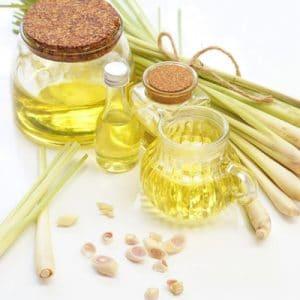 Tinh dầu từ cây sả java có nhiều tác dụng tuyệt vời