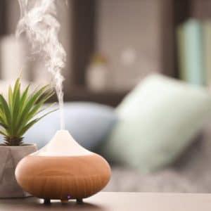 Thường xuyên xông tinh dầu bạc hà giúp khử mùi, kháng khuẩn hiệu quả