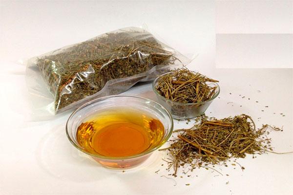 Loại cây này có tác dụng hỗ trợ điều trị sỏi thận, sỏi mật