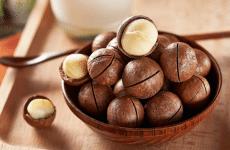 Hạt macca - Một trong những loại hạt giàu dinh dưỡng và ngon nhất thế giới