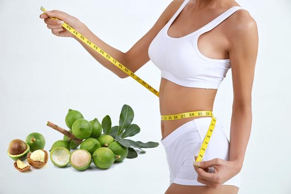 Axit palmitoleic có trong hạt macca giúp giảm cân hiệu quả