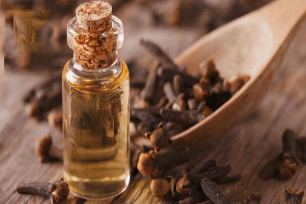 Dùng tinh dầu nụ hoa để trị mụn