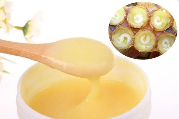 Ngậm và nuốt từ từ sữa ong chúa là cách dùng đơn giản nhất