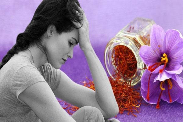 Nhụy hoa nghệ tây hỗ trợ điều trị bệnh trầm cảm, mất trí nhớ