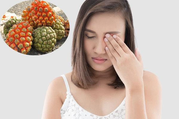 Quả dứa dại còn giúp chữa các bệnh về mắt rất tốt