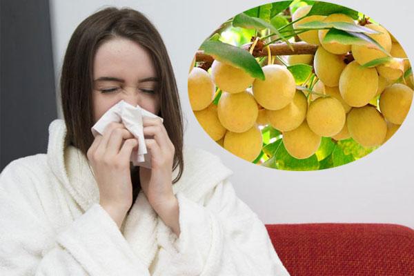 Bạch quả có công dụng chữa ho, cảm lạnh