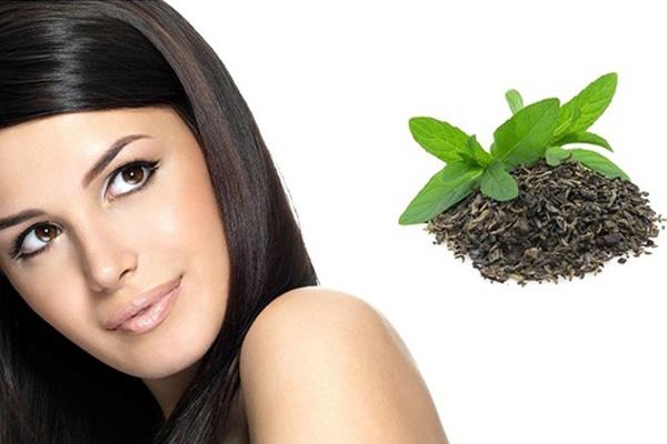Cách trị rụng tóc bằng trà xanh