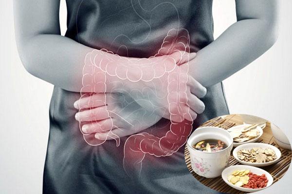 Các triệu chứng rối loạn tiêu hóa có thể sử dụng củ bình vôi để cải thiện tình trạng bệnh
