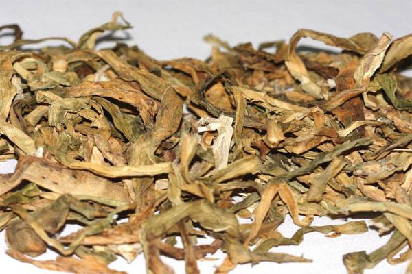 Thảo dược này được thu hái quanh năm và có thể phơi khô để bảo quản
