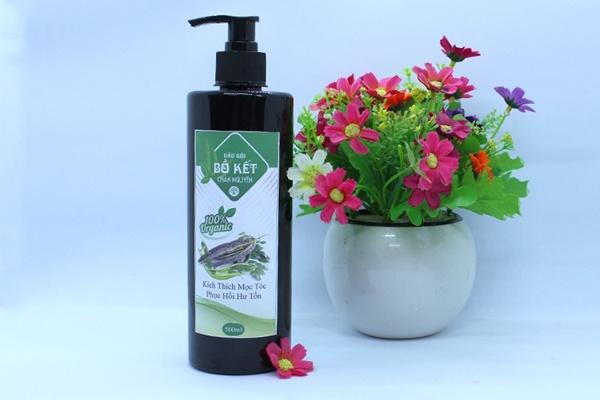 Sử dụng dầu gội trị rụng tóc chân nguyên