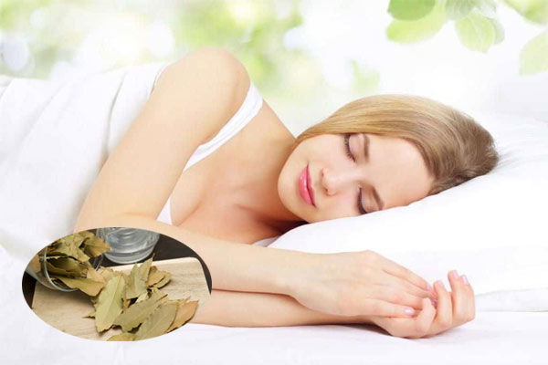 Sau khi sử dụng dược liệu này bạn sẽ có được giấc ngủ ngon, chất lượng, giúp tinh thần luôn sảng khoái