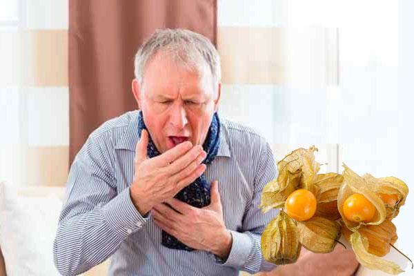 Cây tầm bốp được dùng chủ trị triệu chứng của các bệnh như viêm đau họng, ho có đờm, nôn ói, nấc cụt, thủy đậu, cảm sốt, đái tháo đường,...