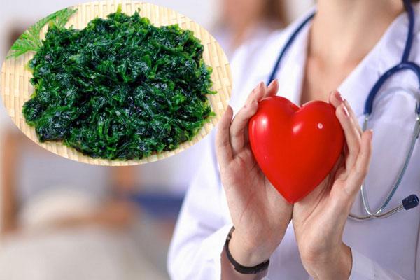 Tảo biển được khuyến khích sử dụng đối với những người có vấn đề về tim mạch