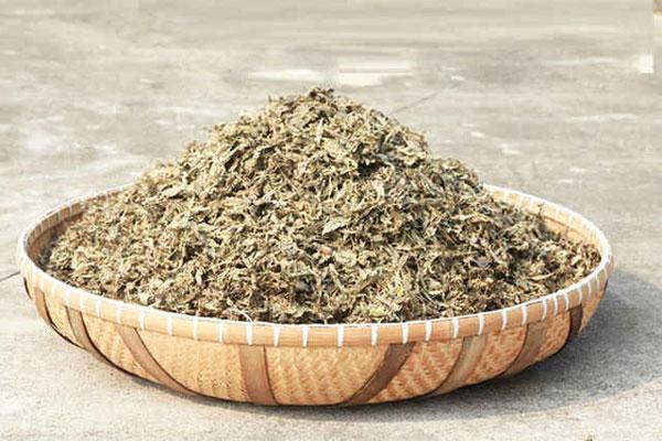 Để bảo quản cần cất Ngải cứu khô vào túi nilon kín