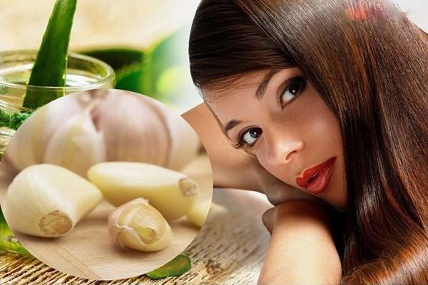 Chữa rụng tóc tại nhà bằng tỏi