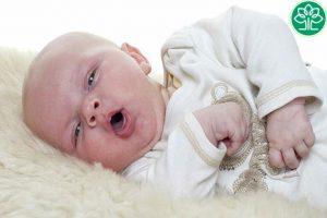 50% số trẻ em dưới 1 tuổi mắc bệnh ho gà đều phải nhập viện
