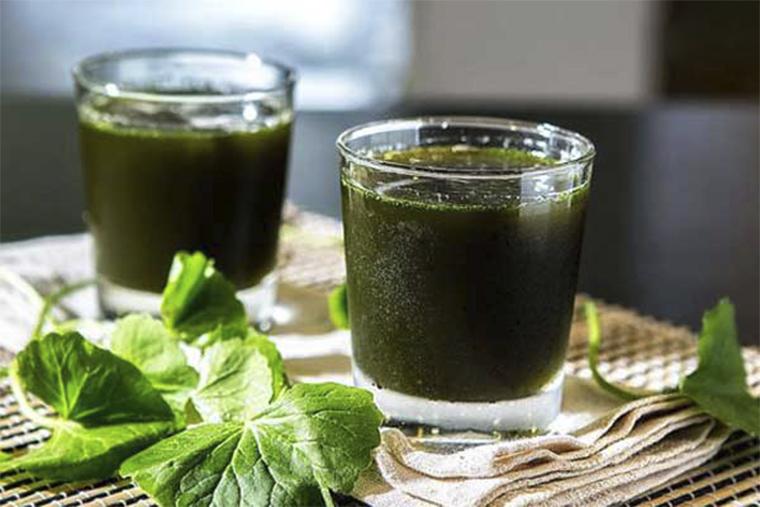 Uống nước ép rau má để trị bênh mề đay